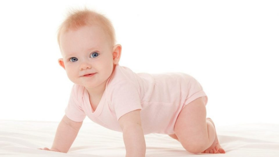 Baby Handling Course